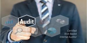 Risk Based Internal Auditor