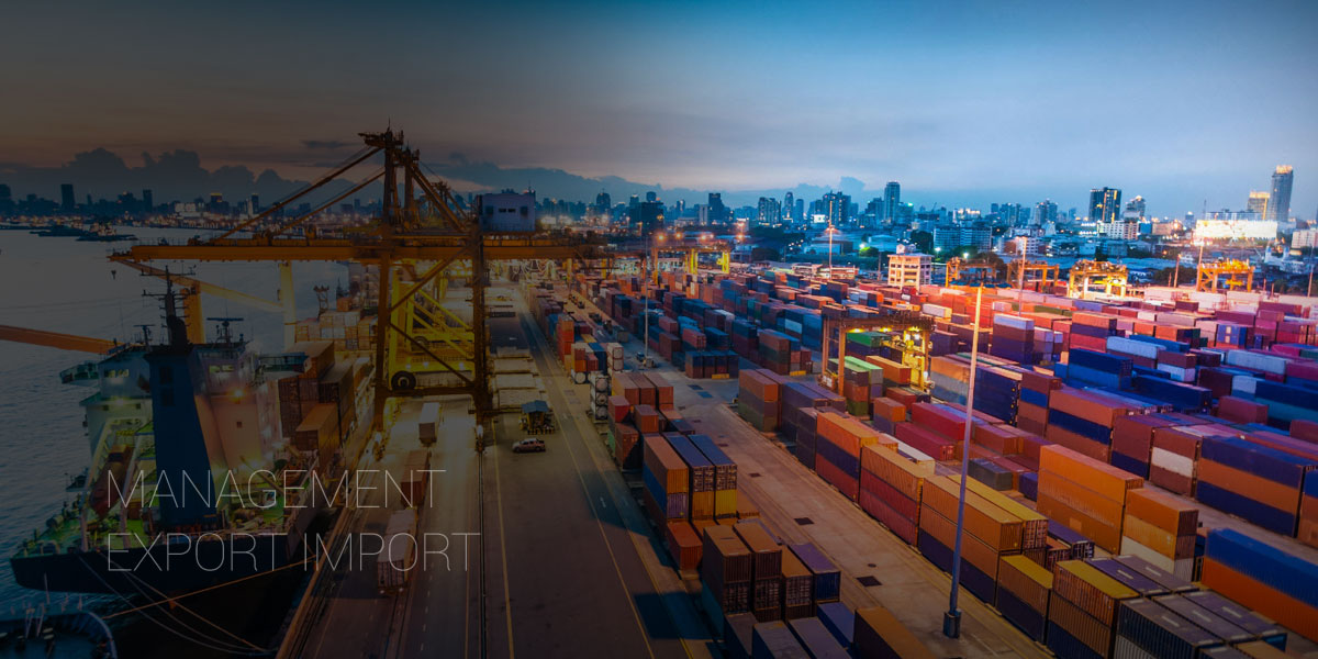 Management Export Import