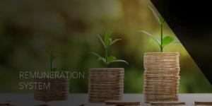 Remuneration System